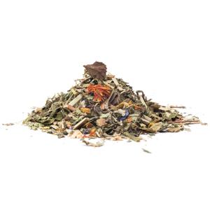 BYLINY PRO JARNÍ OČISTU - wellness čaj, 50g