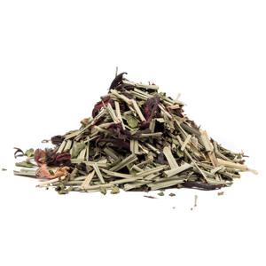 DOBRÁ SNÍDANĚ - bylinný čaj, 10g